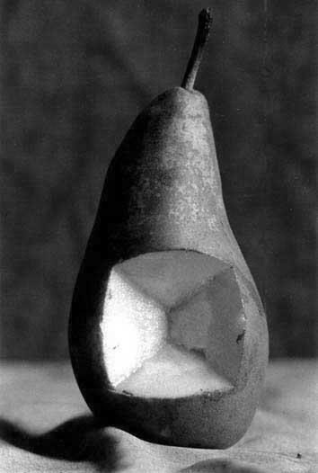 photo michel ducruet, poire decoupee, pear